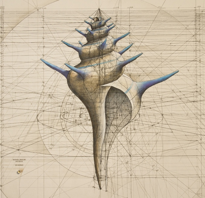 Golden Ratio Adult Coloring Book Goes On Kickstarter